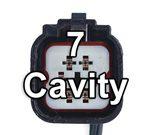 7 Cavities