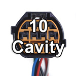 10 Plus Cavities